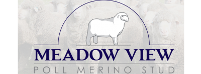 Meadow View Poll