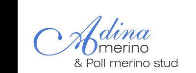 Adina Poll