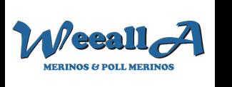 Weealla