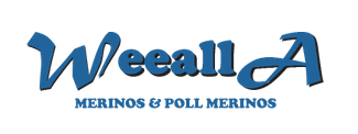 Weealla Poll