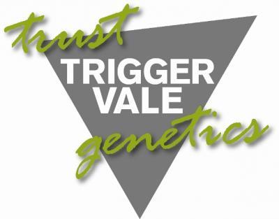 Trigger Vale, Lockhart, On-property sale