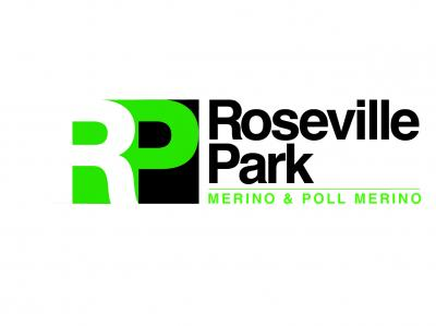 Roseville Park, Dubbo, On-property sale